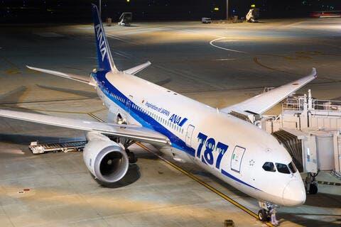 Boeing 787 Deliveries May Be Halted Until October