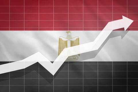 Egypt Eyes Boosting Agricultural Exports to $2.2 Billion