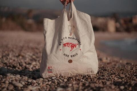 Startup of the Week: Saving Lebanon's Marine Life One Bag at a Time