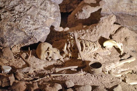 The Oldest DNA is to a Czechia Woman Who Lived 45000 Years Ago